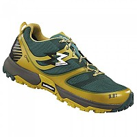 [해외]가몬트 Track Goretex Dark Yellow / Dark Green