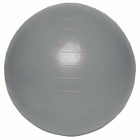 [해외]EVERLAST EQUIPMENT Fitness Ball Black