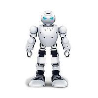 [해외]MIDLAND Alpha1S Robot Interactive