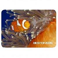 [해외]BEST DIVERS Magnet Clown Fish 8 Pcs