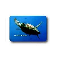 [해외]BEST DIVERS Magnet Turtle 8 Pcs