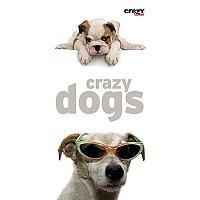 [해외]STT SPORT Crazy Towel Crazy Dogs Terry Loop Multicolour