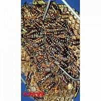 [해외]STT SPORT Crazy Towel Wasps Terry Loop Multicolour