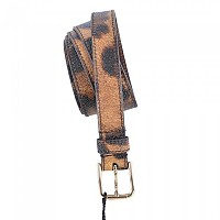 [해외]돌체앤가바나 Women Print Animal Belt Gold