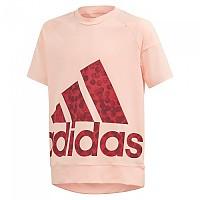 [해외]아디다스 Statement Bright Pink / Active Maroon / Collegiate Burgundy