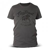 [해외]DMD Fury Beast Grey
