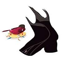 [해외]마시 빕 숏s 탑 테크 Black