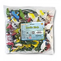 [해외]SAFARI LTD Exotic Birds Bulk Bag 4137555276 Multicolor