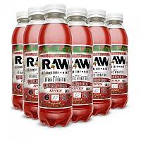 [해외]RAW SUPERDRINK Raw 500ml x 12 Pet 137576429