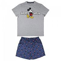 [해외]CERDA GROUP Mickey 137582887 Grey