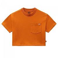 [해외]DICKIES Porterdale Crop Short Sleeve T-Shirt 9138164458 Pumpkin Spice