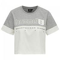 [해외]험멜 Legacy SIW Cropped Short Sleeve T-Shirt 3138223099 Grey Melange
