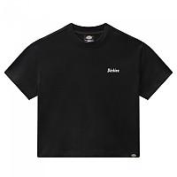 [해외]DICKIES Bettles Short Sleeve T-Shirt 9138164705 Black