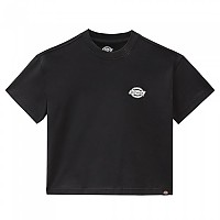 [해외]DICKIES Calico Rock Short Sleeve T-Shirt 9138164719 Black