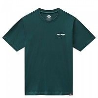 [해외]DICKIES Reworked Short Sleeve T-Shirt 9138164733 Ponderosa Pine