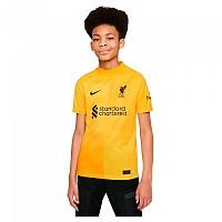 [해외]나이키 Liverpool FC 21/22 Junior T-Shirt 3138253213 University Gold / Black