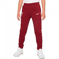 [해외]나이키 Liverpool FC Fleece 21/22 Junior Pants 3138253257 Team Red / Fossil