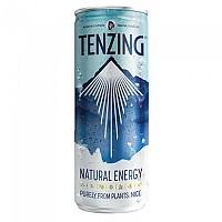 [해외]TENZING Natural Energy 250 ml 3138042680